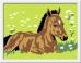 Набор для рисования Ravensburger Раскрашивание по номерам «Жеребёнок»