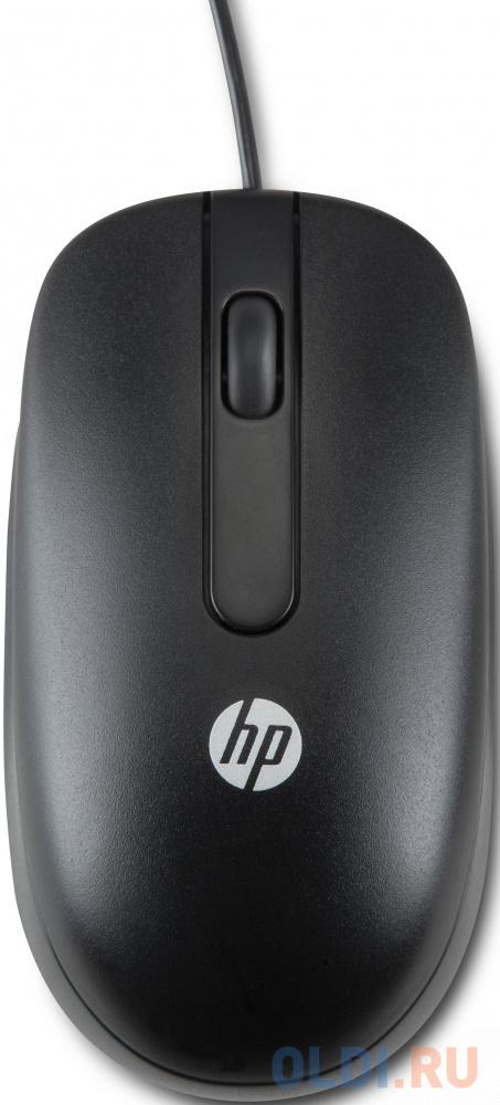 Мышь проводная HP QY777AA чёрный USB