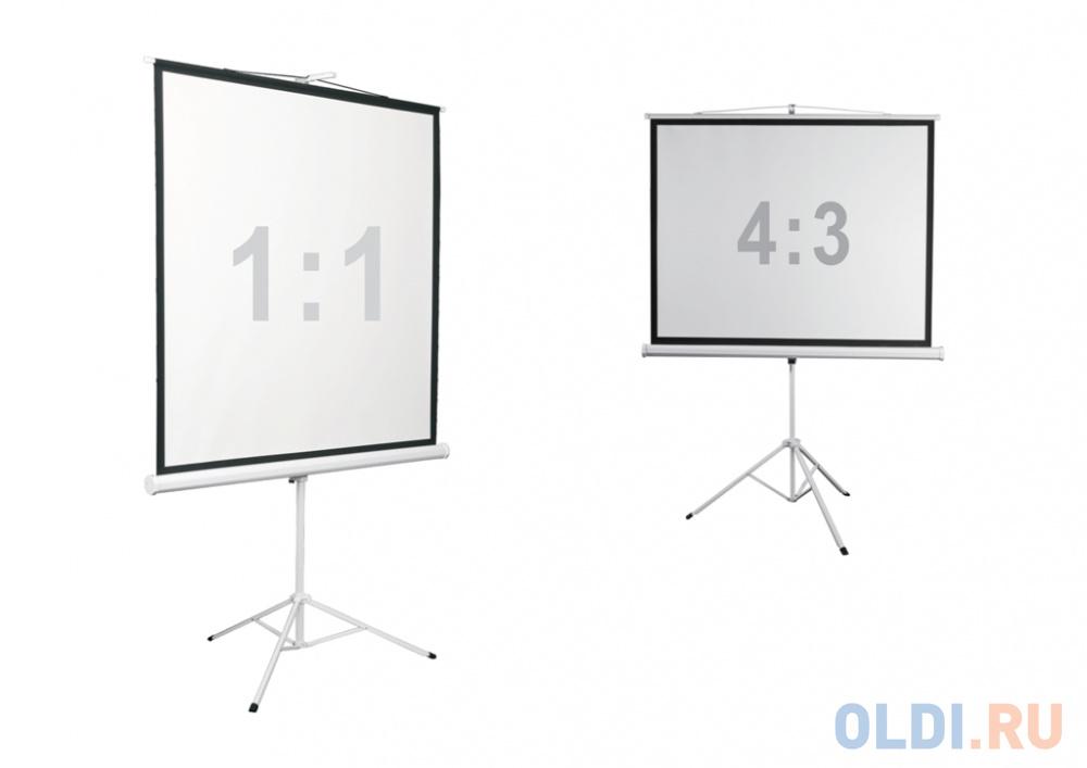 Экран напольный Digis Kontur-D DSKD-4302 130x172см digis kontur a mw dska 4302
