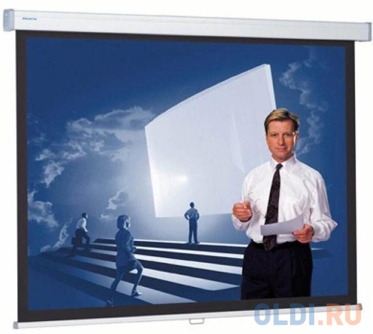 [10200315] Экран Projecta Proscreen CSR 154x240 см (112) Datalux настенный рулонный 16:10.