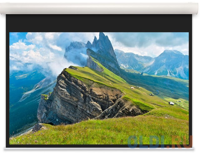 [10102096] Экран Projecta Elpro Concept 139x240 см (104) Matte White с эл/приводом доп.черная кайма 53 см 16:9.