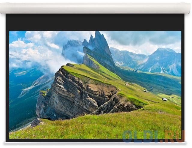 [10102098] Экран Projecta Elpro Concept 173x300 см (131) Matte White с эл/приводом доп.черная кайма 20 см 16:9.