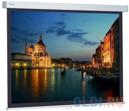 [10201069] Экран Projecta ProScreen 179x280см (125) Matte White настенный рулонный 16:10.