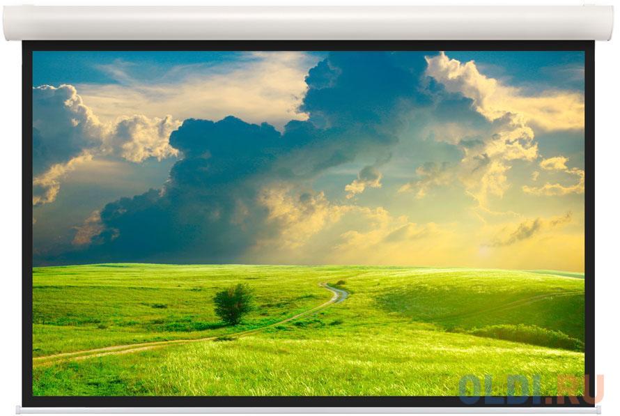 [10101579] Экран Projecta Elpro Concept 207x360 см (163) Matte White (с чёрн.каймой) с эл/приводом 16:9.
