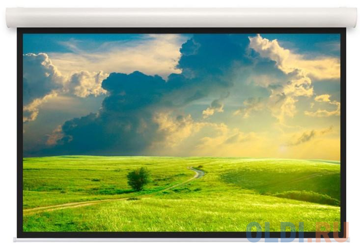 [10103494] Экран Projecta Elpro Concept 183x240 см (113) Matte White (с черн.каймой) с эл/приводом 4:3.