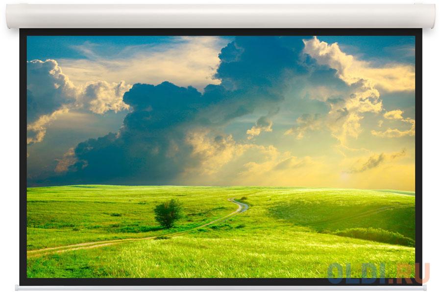 [10103539] Экран Projecta Elpro Concept 154x240 см (107) Matte White (с черн.каймой) с эл/приводом 16:10.