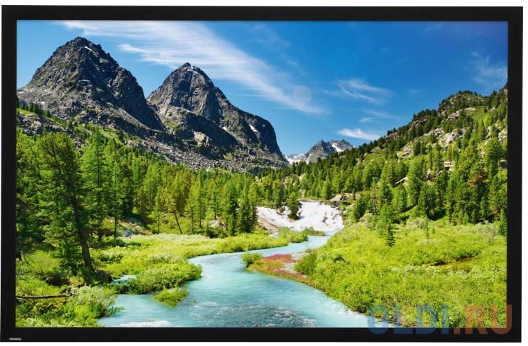 Экран настенный Projecta HomeScreen Deluxe 173x296см 173х296 см.