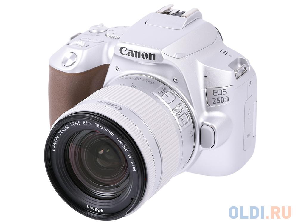 Зеркальный фотоаппарат Canon EOS 250D KIT (3461C001) Silver