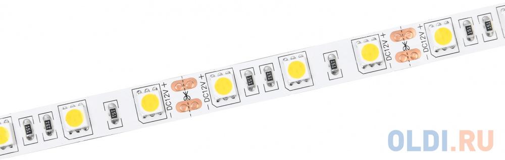 Лента светодиодная IEK LSR2-2-060-20-3-03 LED 14.4W 6500K