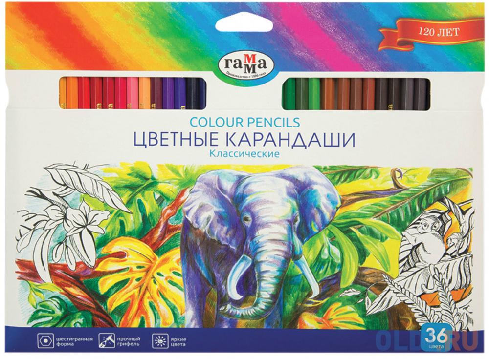 Набор цветных карандашей Гамма Классические 36 шт 174 мм 181477.