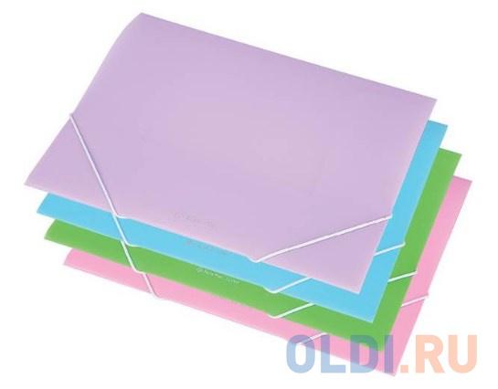 Папка на резинках, ф.A4, FOCUS прозрачный матовый, материал PP, плотн. 350 мкр, 200 л., фиолетовый фото