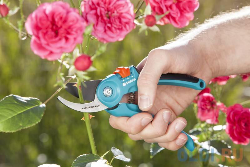 Фото - Секатор контактный Gardena B/S-M черный/синий 08853-30.000.00 секатор контактный gardena b l большой серый черный 08906 20 000 00