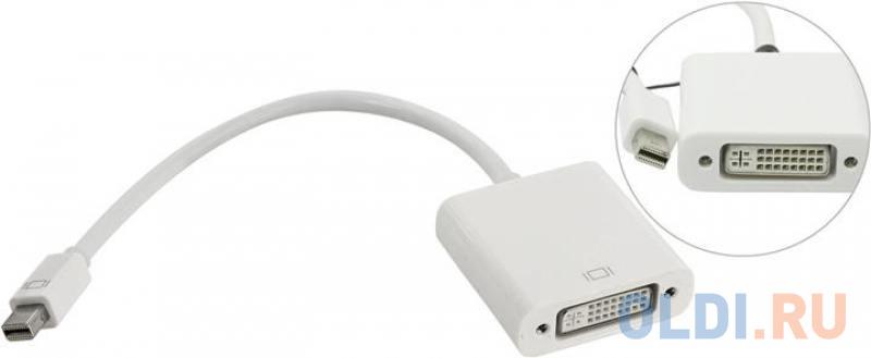 Фото - Адаптер 5bites AP-017 MINI DISPLAYPORT M / DVI F переходник kramer mini displayport dvi 99 95200003 mini dp m на dvi f 15см adc mdp df