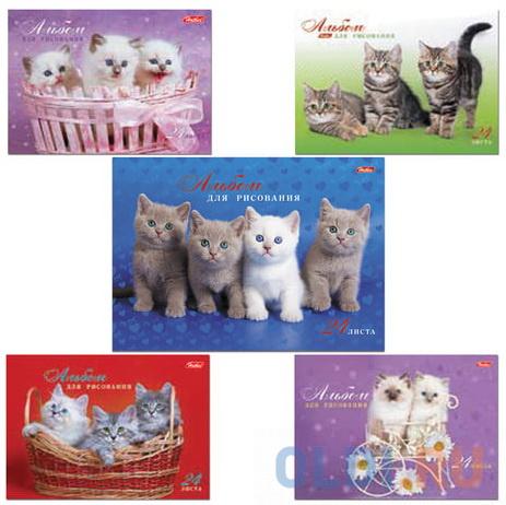 """Альбом для рисования, А4, 24 л., спираль, обложка картон, HATBER """"Милые котята"""", 24А4Всп, A075449"""