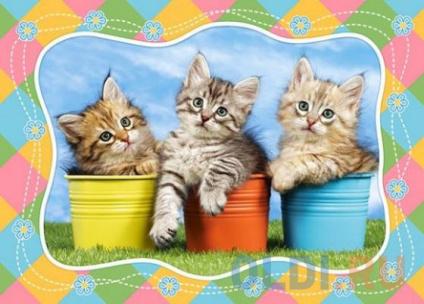 Фото «Пазлы 60 MIDI Три котенка» в Ростове-на-Дону